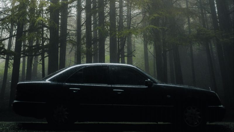 Dark Car in Forest